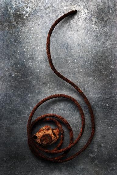 Spiral (2013)